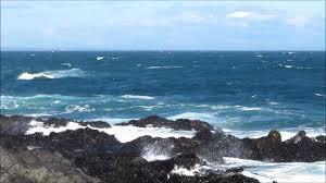 Mar isla negra
