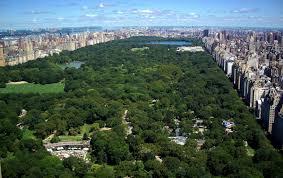 Nueva York Central park calidad