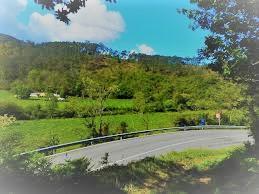Carretera paisaje verde 1 - retovado